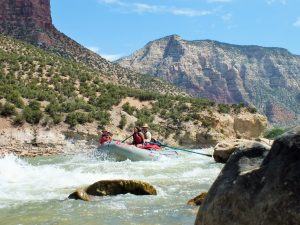 Green river, homepage